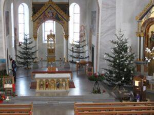 Die Christbäume sind da…